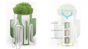 mictorio-ecologico