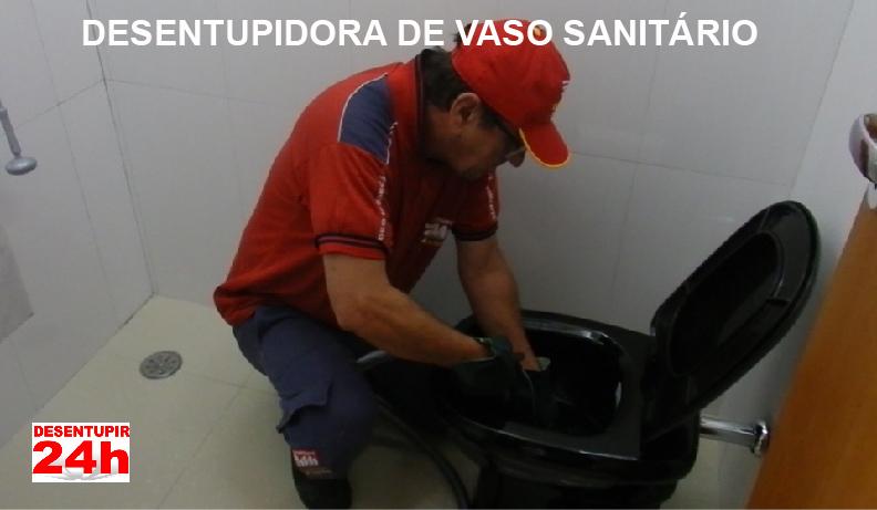 Desentupindo Vaso Sanitário