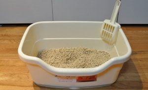 Areia para animais domésticos
