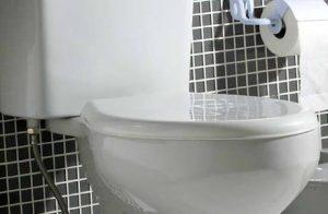 Entupimento em vaso sanitário