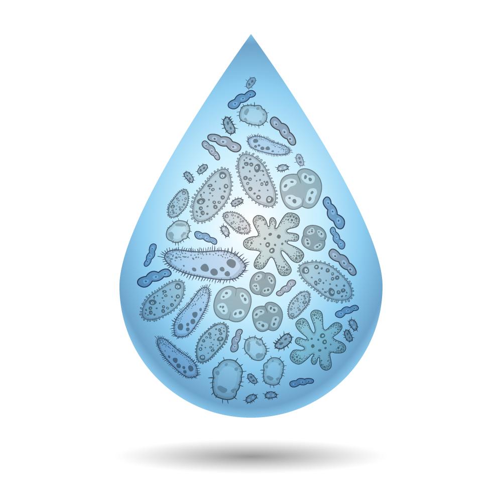Gota água contaminada
